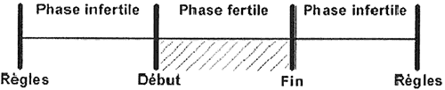 Sensiplan – Phases