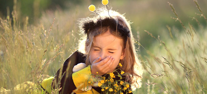 Homéopathie allergies